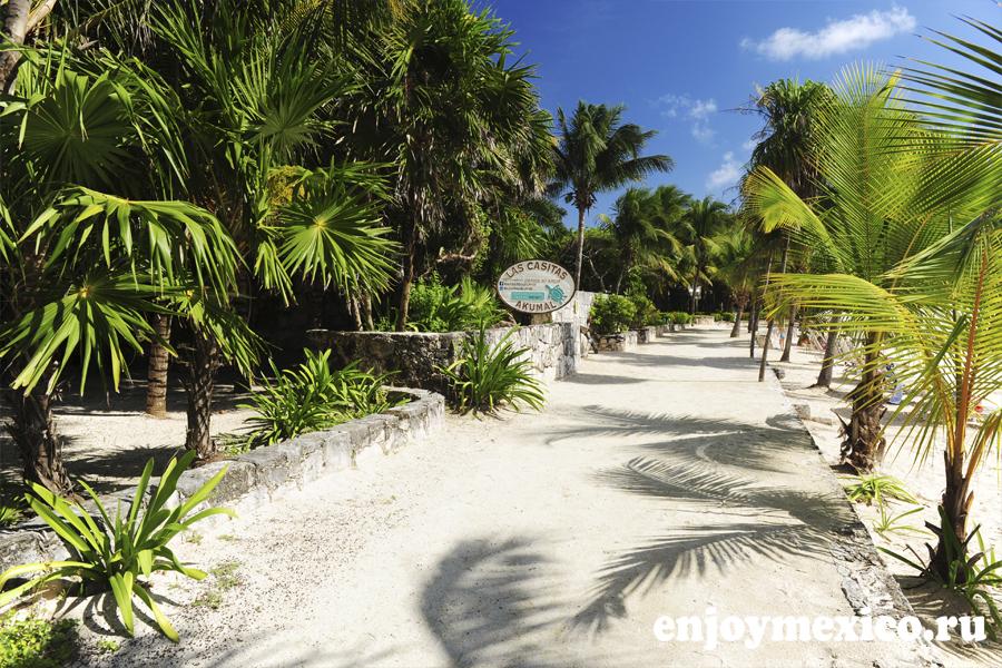 дорога к пляжу акумаль мексика