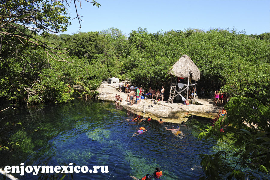 мексиканские сеноты фото