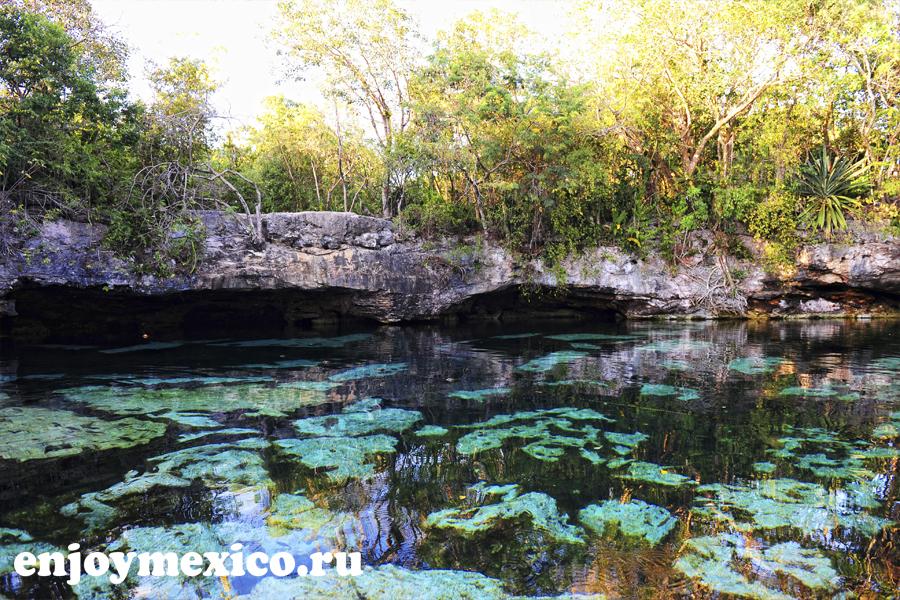 мексиканские сеноты