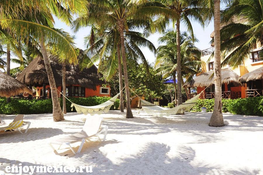 плая дель кармен мексика пальмы