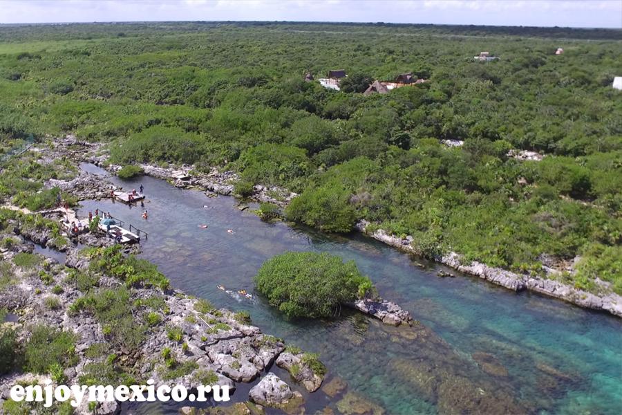 ривьера майя фото природы