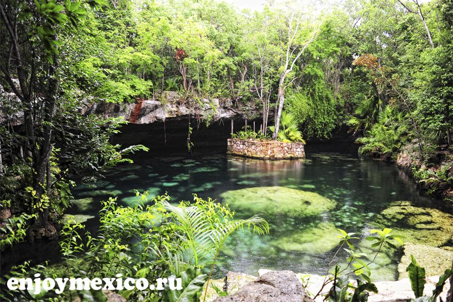 сеноты в мексике