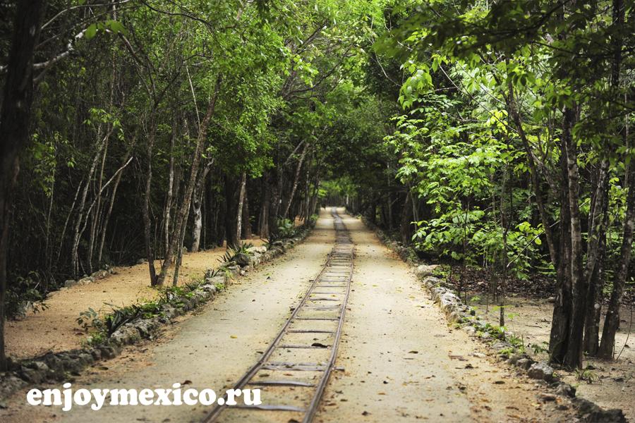 рельсы и поезд в сеноту кантучи мексика