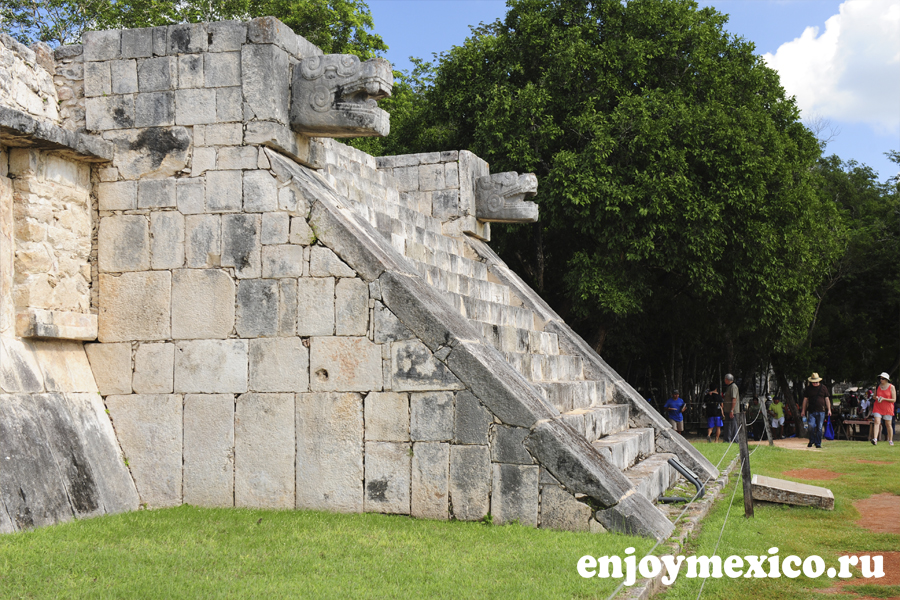 чиченица мексика