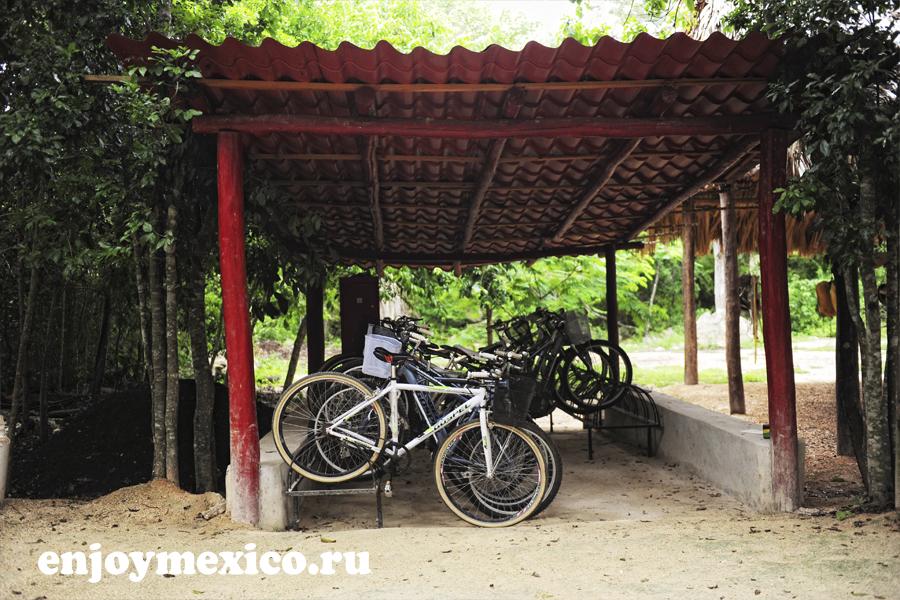 велосипеды в сеноте кантучи ривьера майя