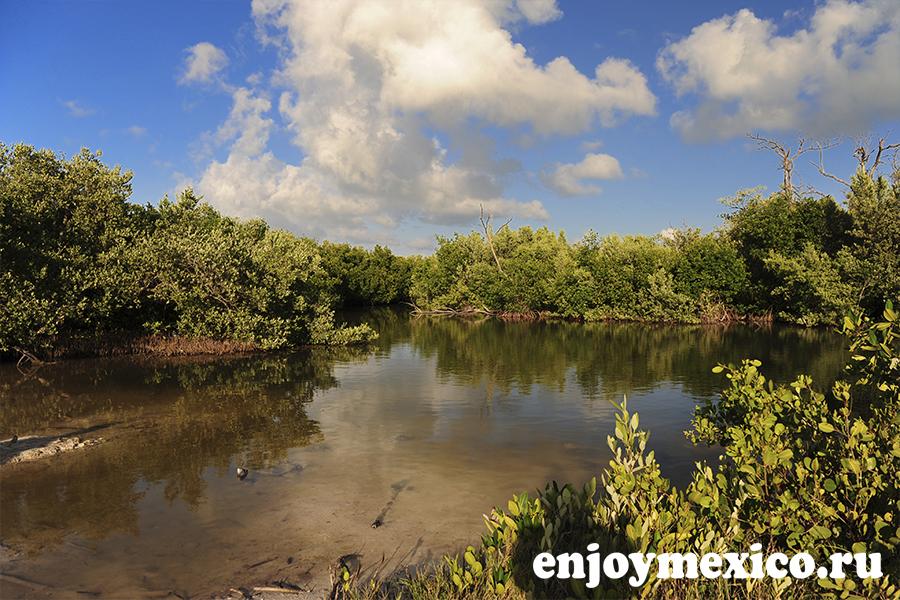 лагуна остров холбокс фото