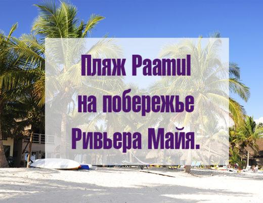 паамуль пляж лого статьи