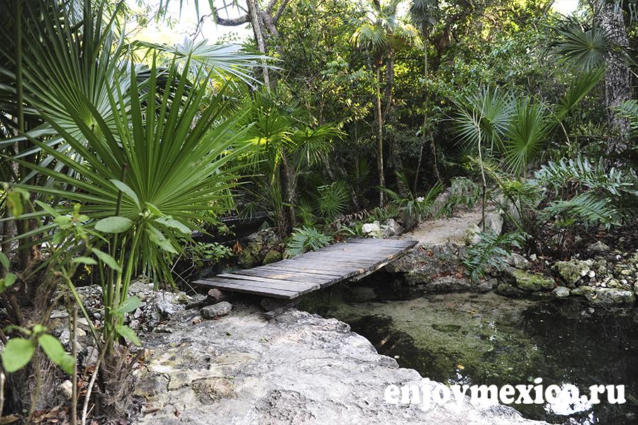 сенот азуль ривьера майя фото