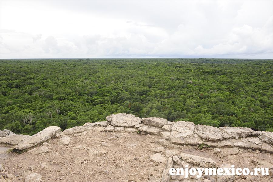 пирамида коба мексика вид сверху