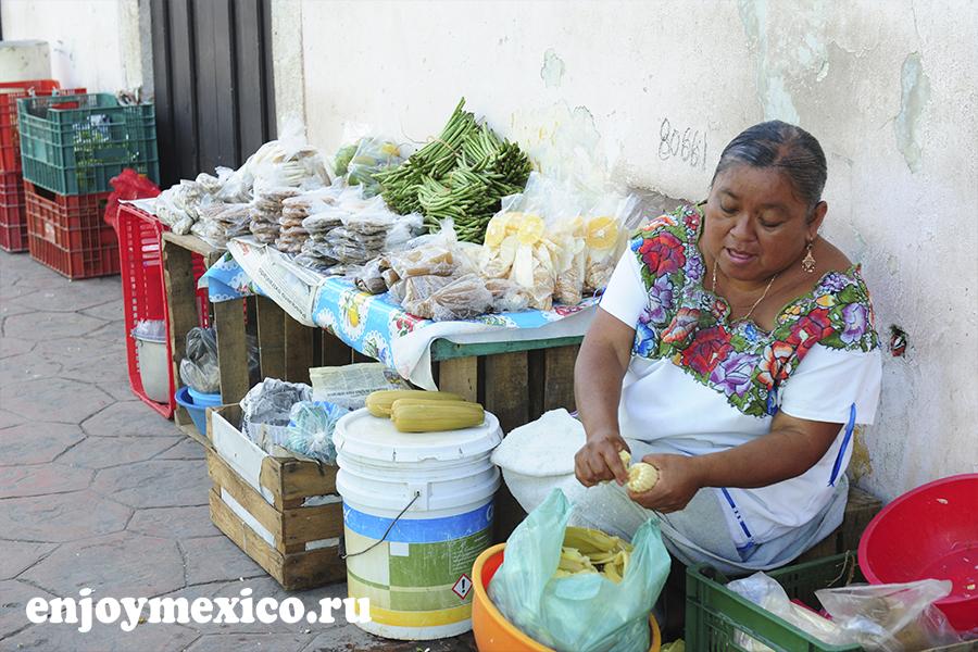 торговля на улитце вальядолид мексика
