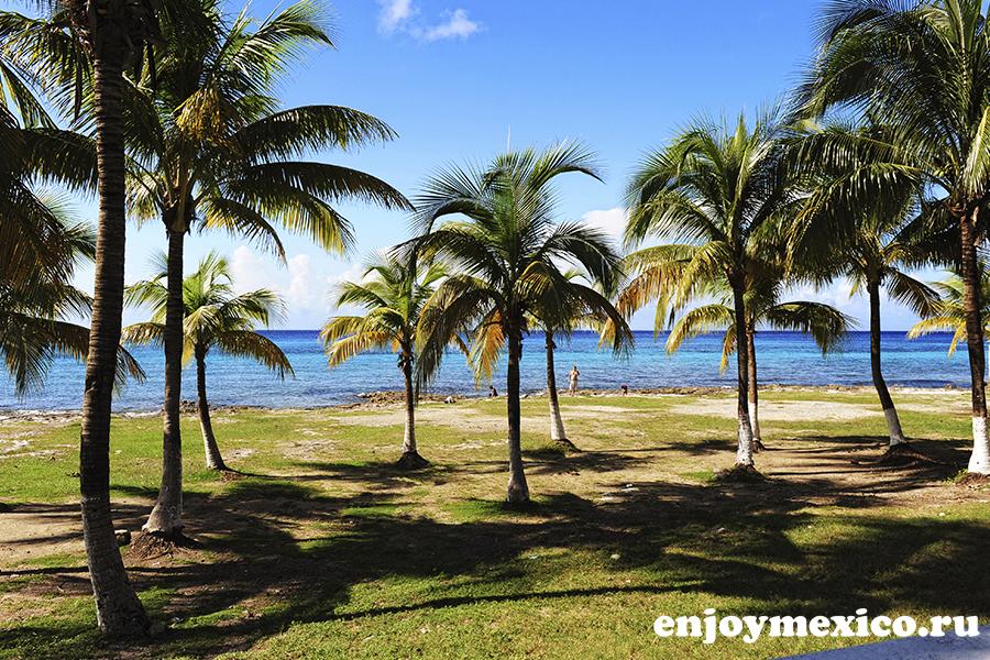 красивые виды острова косумель мексика