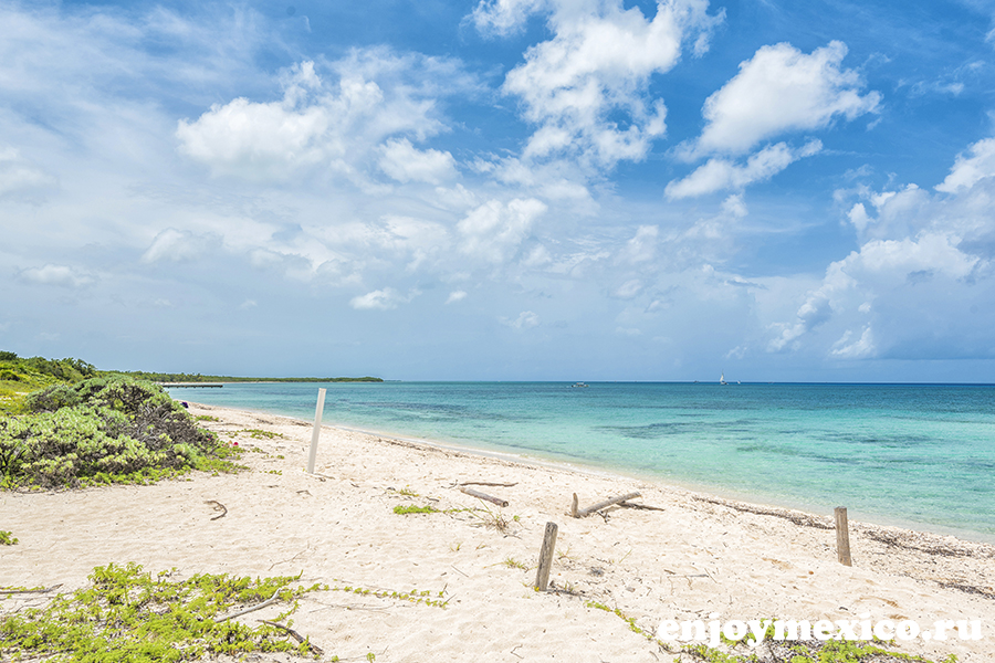 пляж паланкар косумель