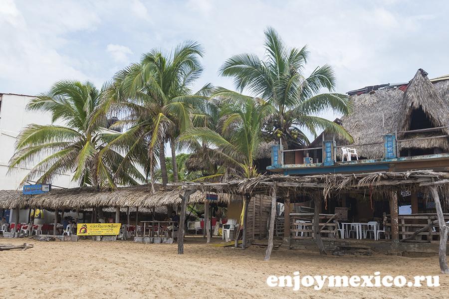 бар и пальмы пляж