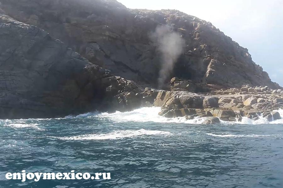 буфадора уатулько мексика