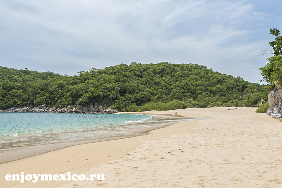 пляж органо в уатулько мексика