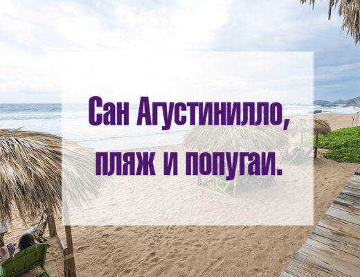 пляж и попугаи сан агустинилло