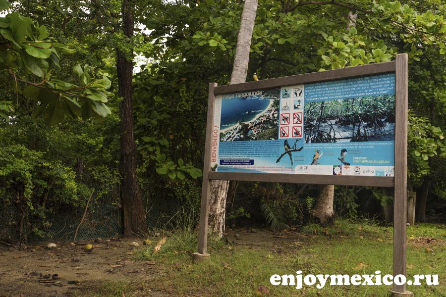 вход на пляж танголунда