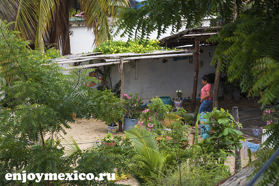 как жизнь в мексике