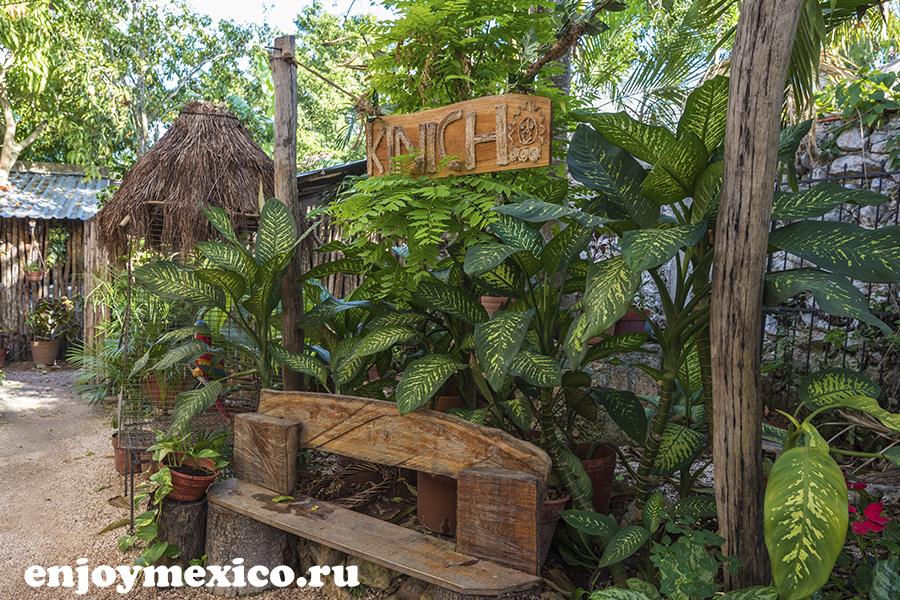 красивое фото ресторана в мексике