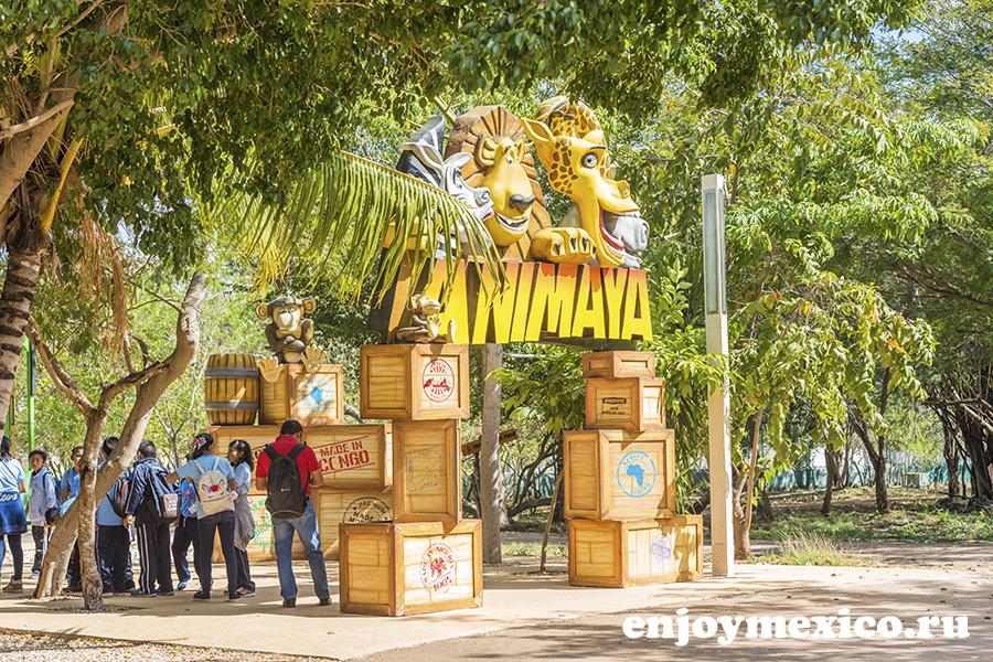 музей анимайя мерида мексика
