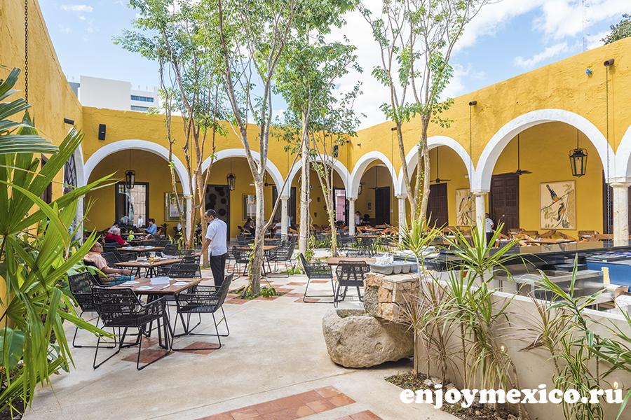 ресторан в мериде гастрономия юкатека